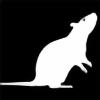 speckandbutter's avatar
