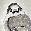 SpectrumNinja's avatar