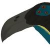 sphenaphinae's avatar