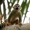 spidarmonkey621's avatar