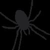 SpidersCreative's avatar