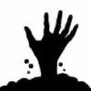 SPIKE295's avatar