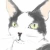 spinning-clover's avatar