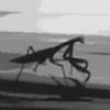 SPJdogg's avatar
