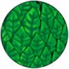 Spuma1600's avatar