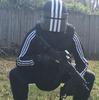 Squatingcommie500's avatar
