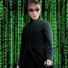 SSRavn's avatar