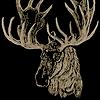 StagMooseStudio's avatar