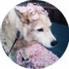 StariaDrinksTea's avatar