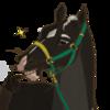 StarrMountainEstate's avatar