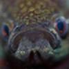 steamingquahog's avatar