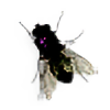 stehlhardt's avatar