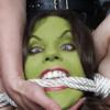 Stevencdaniels's avatar