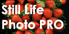 Still-Life-Photo-Pro's avatar
