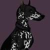 stjermaen's avatar