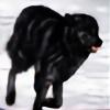 StoneLynx's avatar