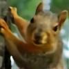 Storm-Wolf-Australia's avatar