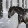 StormBraver's avatar