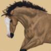 StormWarning06's avatar