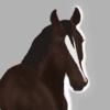 stormypeak's avatar