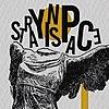 strayinspace's avatar