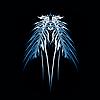StuartWh's avatar