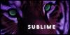 sublime-xx