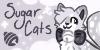 sugar-cats's avatar