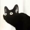 Sugarserk8's avatar