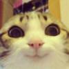 Sun2167's avatar