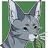 Sunflower-Owl's avatar