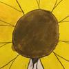 Sunflower180's avatar