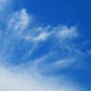 SunnyDEI-Stock's avatar