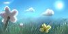 SunnySkies-RP's avatar