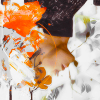 Super-Fan-Wallpapers's avatar