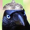 SuperAngryCrow's avatar