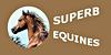 Superb-Equines