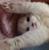 suppsupppopcorn's avatar