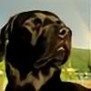 surferBB's avatar