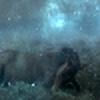 Surreal-Rain's avatar