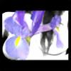 susannb's avatar