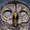 Suvikuu's avatar
