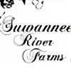 SuwanneeBreyerRanch's avatar