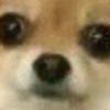 SWATtheFox's avatar