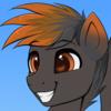 SWIFTBLAZEOC's avatar