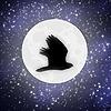 sydney091301's avatar