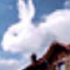 Syuniikiss's avatar