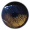 t-eye-ger's avatar