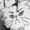 t-i-l-d's avatar