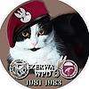tadek61's avatar
